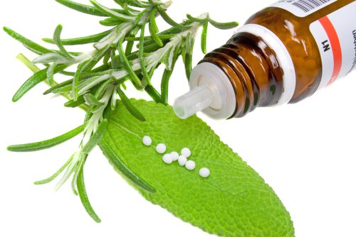 Understanding Salvia As A Psychoactive Drug