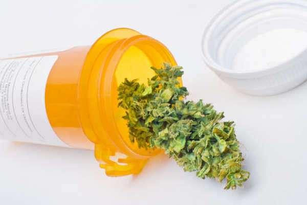 Quick Overview on Medicinal Marijuana